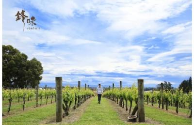 新西兰第一所提供大学农业课程的林肯大学环境专业介绍