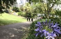 中央昆士兰大学旅游管理专业有什么优势?
