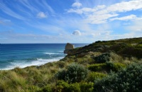 澳洲蓝山国际酒店管理学院就业率高?