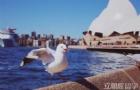 澳洲留学必看!澳洲艺术类优质院校大推荐!