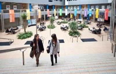 新西兰留学如果快速融入本地学生圈?