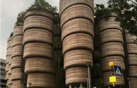 新加坡南洋理工大学的学生社团果然不一般!