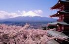 日本大学的申请要点,你想知道的都在这!