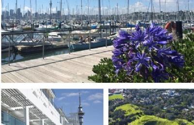 新西兰留学:东部理工学院位于霍克斯湾纳皮尔市