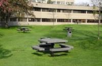 如何进入蒙特埃里森大学就读?