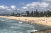 澳洲护照贬值?2020年,欧盟新政不再对澳免签