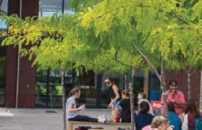 留学新西兰:新西兰奥克兰理工大学申请条件