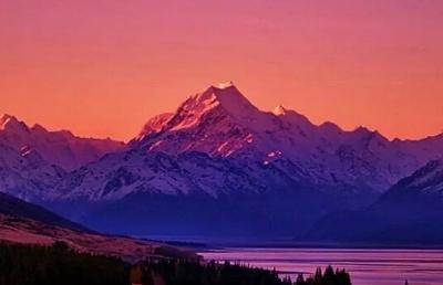 适合自己的才最重要!新西兰最具潜力的热门专业大搜罗!