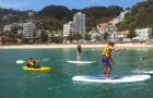面临拒签的风险,新西兰留学签证被拒签怎么办?