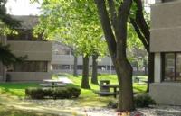 申请莱姆顿学院需要哪些条件?