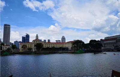 新加坡5所理工学院毕业生薪资排名出炉,最吸金的课程是?