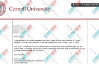 合理规划,学生配合度也高,恭喜L同学获取康奈尔大学offer!