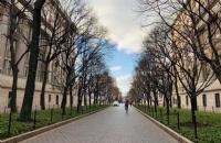 北卡罗来纳大学教堂山分校本科每年收多少中国人?