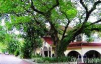 马来西亚理工大学具体地址
