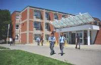 加拿大海外留学生人数爆涨,都是为了移民吗?