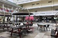 新加坡JCU二月即将开学!带你提前领略这座宝藏院校的亮点!