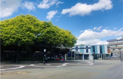 新西兰留学这些专业最辛苦!你准备好了?