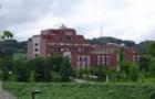 学生与老师密切配合,用心规划,喜获金泽大学offer!
