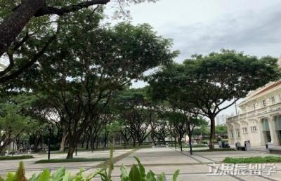 关于为中国公民办理泰国签证延期领事协助信函的通知