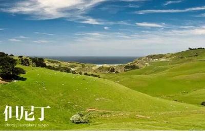 新西兰留学丨新西兰环境科学硕士课程该选择哪所院校?