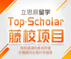 Top Scholar 藤校项目