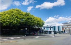 新西兰热门留学热门专业解读之商科、建筑学