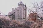 艺术生想去日本留学?这份申请攻略请备好!