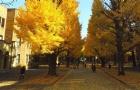 日本留学奖学金该如何申请?这份攻略快收藏好!
