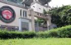 香港岭南大学入学条件大解析,快看看你有没有达标?