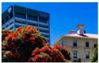 惠灵顿维多利亚大学法学院在新西兰的研究质量排名第一
