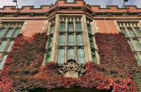 克服申请自卑直追英国名校,她靠着自身优势录取谢菲尔德大学