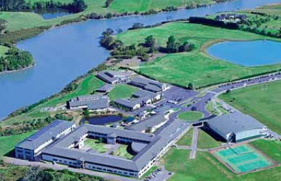 新西兰UP国际学院暂停校园内活动 教学和工作全部转为线上模式