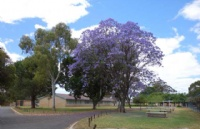澳大利亚天主教大学关于新型冠状病毒的最新通告