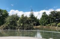 新西兰留学移民选酒店管理专业这些院校最适合!