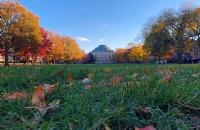 哥伦比亚大学中国留学生比例