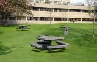 加拿大新冠确诊人数剧增!约克大学整栋宿舍隔离!