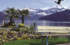 IMI瑞士国际酒店管理大学本科课程特色