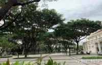 泰國朱拉隆功大學校區