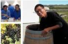 新西兰留学:新西兰读酿酒专业院校推荐