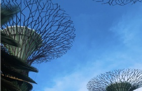 低龄留学新加坡,如果能够减少留学花费?