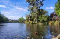 留学新西兰:新西兰留学一年费用多少