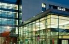 德累斯顿国际大学开设了哪些专业?