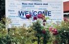 新西兰留学读语言:新西兰有哪些语言学校可以选择?