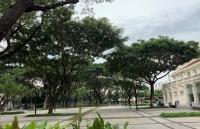 朱拉隆功大学学院设置