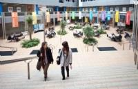 去新西兰读中学:新西兰高中留学排名介绍