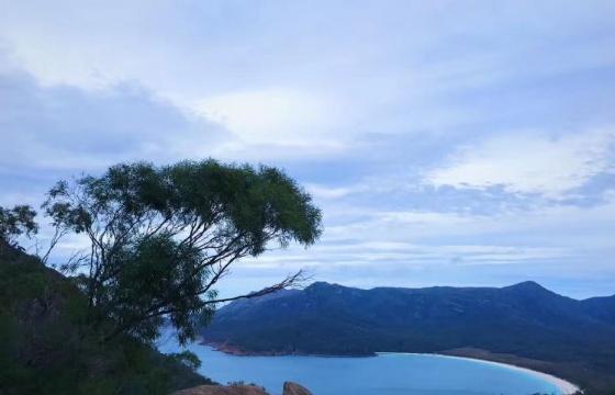 线上讲座|澳洲全年龄段留学