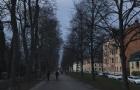 最古老的公立大学之一――瑞典体育学院