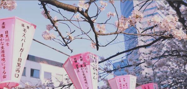日本留考今年要取消?留考分数高得奖学金几率越大!