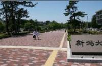 日本七帝官十一之一:新��大学