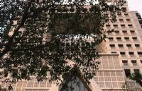 泰国的私立院校和公立院校该选择哪个?